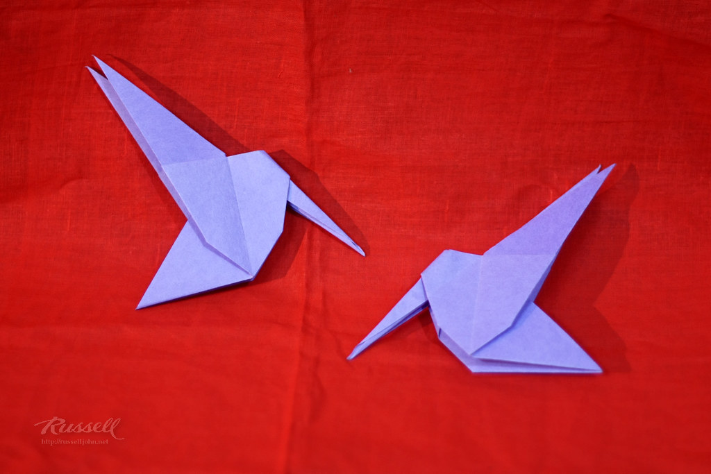 Origami Hummingbird | Designed by David Wires Folded by ... - photo#28