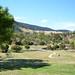 Livingstone Creek Park 01