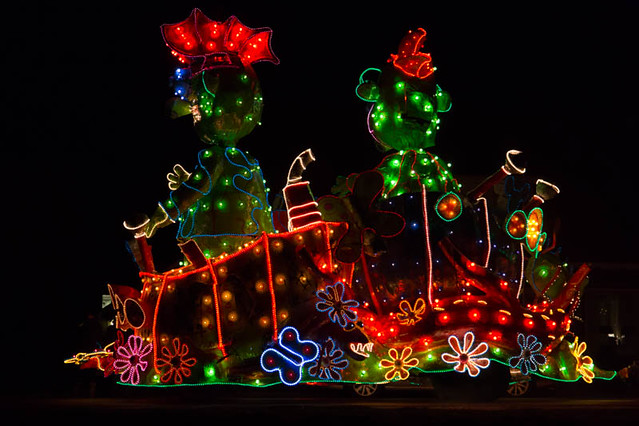 Foto\'s Verlichte Carnavalsoptocht Lemelerveld 2013 | Flickr
