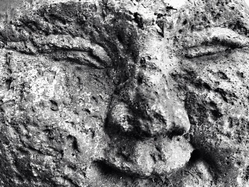 Stone Faced Smile | by SteadyHand