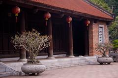 The Temple of Literature - Hanoi, Vietnam