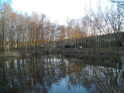 Cesson la for t derri re l 39 cole jacques pr vert delphine cingal flickr - Cesson la foret ...