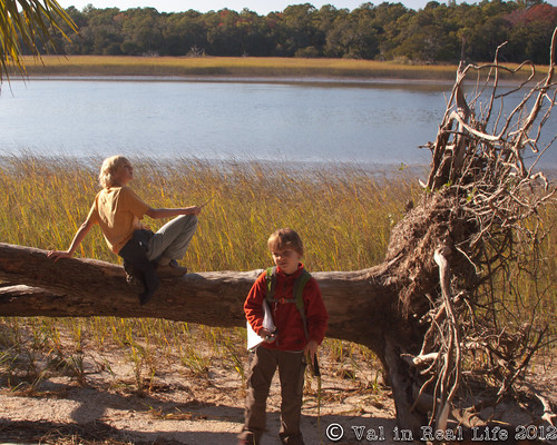 skidaway island state park - val in real life