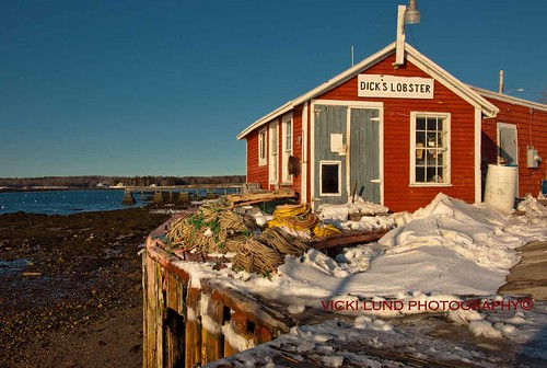 Dick's Lobster ~  Harpswell, Maine | by Vicki Lund Photography