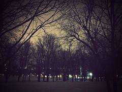 Mount-Royal at night