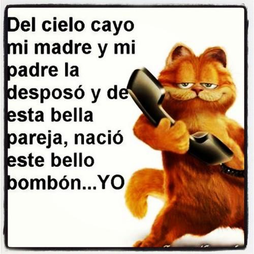 Garfield Frases En Español Imagui
