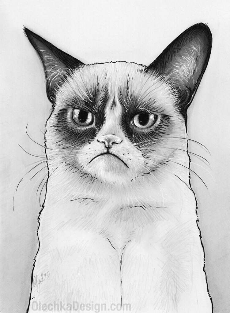 Grumpy Cat Drawing, Tard, Tardar Sauce | Tard the Grumpy ...