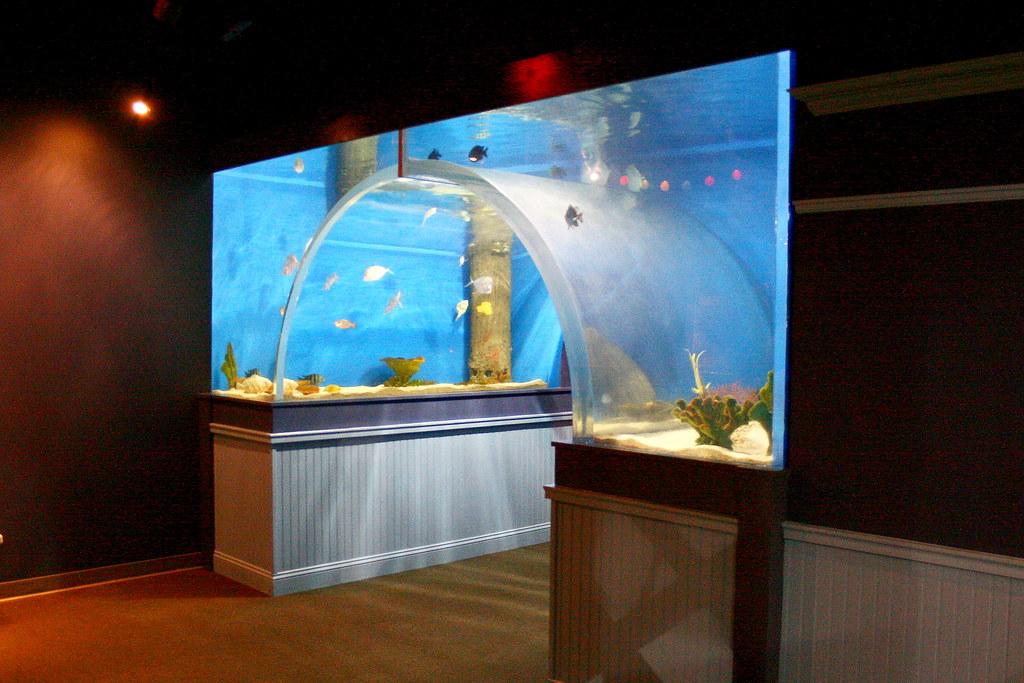 Greater Cleveland Aquarium Cleveland Ohio A Small