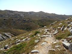 Sur le sentier balisé (jaune) de Quenza après l'embranchement à droite