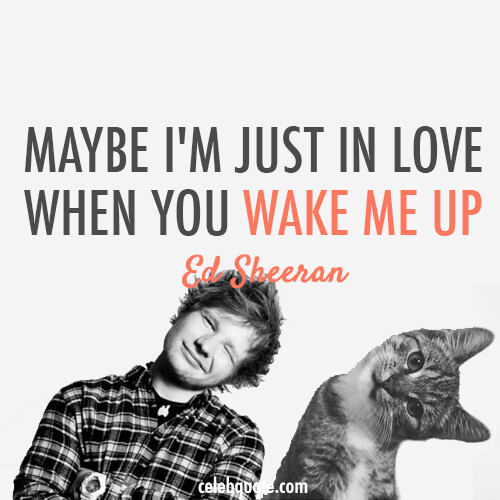ed sheeran quote collection give me love the a team