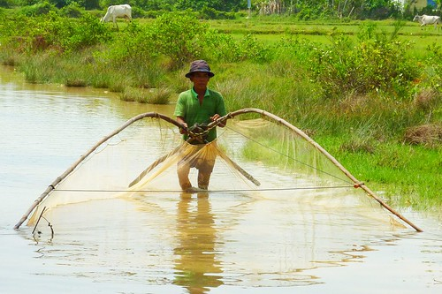 Rice field fisheries in Cambodia. Photo by Eric Baran, 2011.