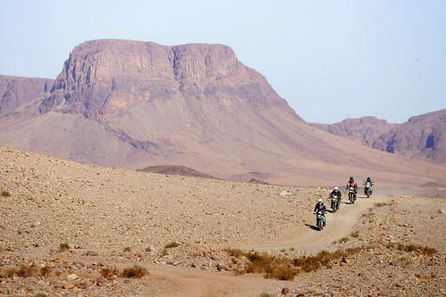Antyatlas i Sahara Zachodnia, luty 2012