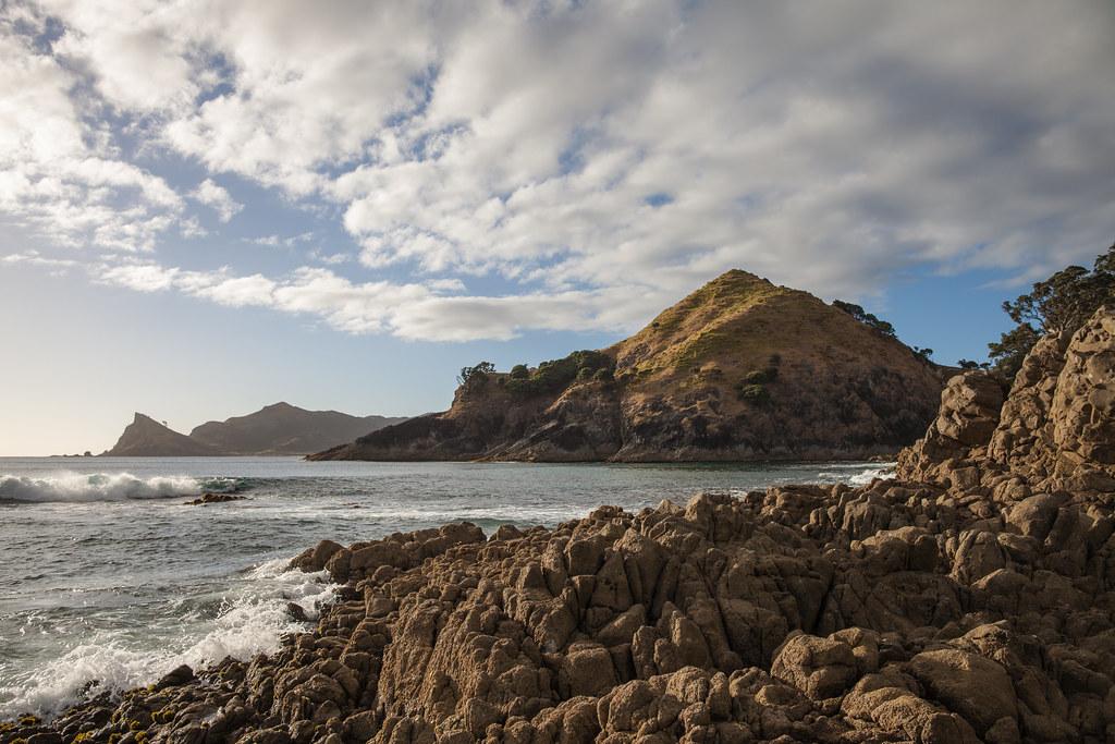 Kaitoke beach great barrier island new zealand richard for Landscape jobs nz