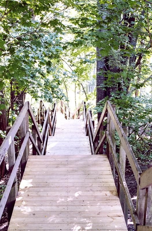 Stairs Down to Glen Stewart Park