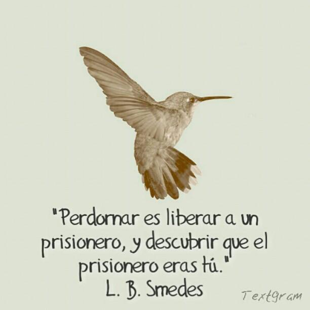 Perdon Libertad Perdon Libertad Prision Prisionero Flickr