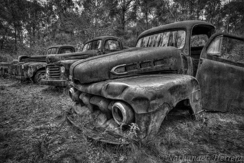 truck graveyard wakulla co florida an old ford truck grav flickr. Black Bedroom Furniture Sets. Home Design Ideas