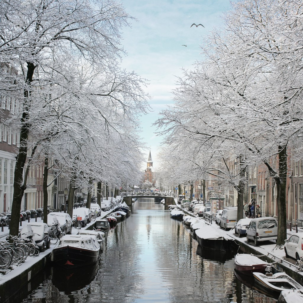 The Frosty Bloemgracht Of Amsterdam 169 All Rights