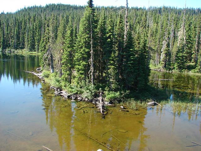 Island in Horse Lake