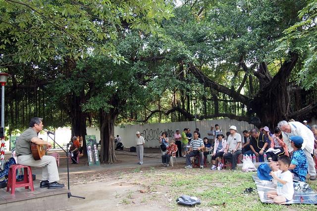 中央公園草地音樂會,市民在大樹綠地間參與活動,希望圍籬早日拆除。攝影:李育琴