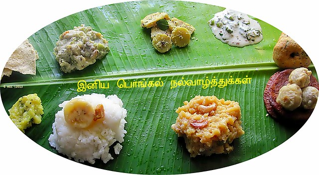 Pongal festival recipes
