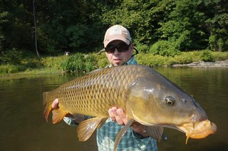 shawns carp | by OrvisNews.com