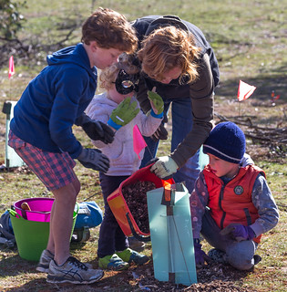 National Tree Day 2017 Planting on Mount Majura @ Mt Majura nature reserve, meet at nature park entrance Tay Street | Watson | Australian Capital Territory | Australia