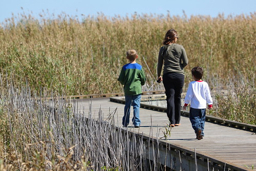 Family walking on the boardwalk | by roy.luck