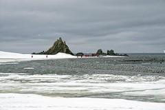 Estação Antártica Polaca Henryk Arctowski