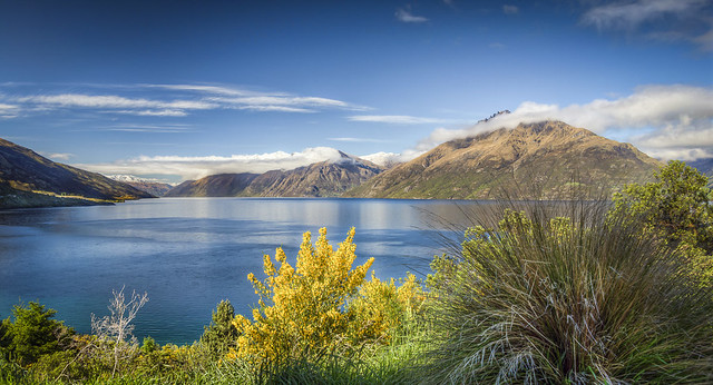 Lake Wakatipu in the Morning