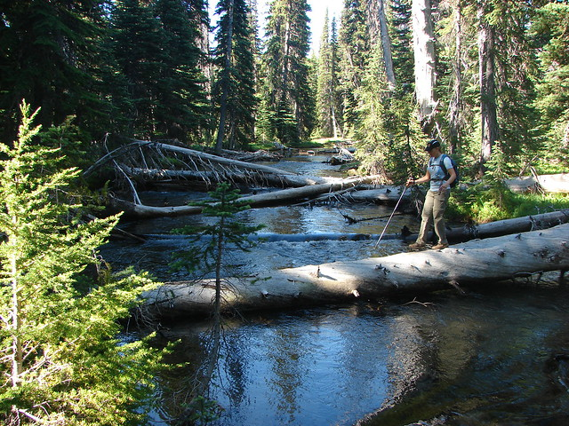 Tumalo Creek Crossing
