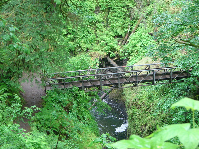 Footbridge over Oneonta Creek