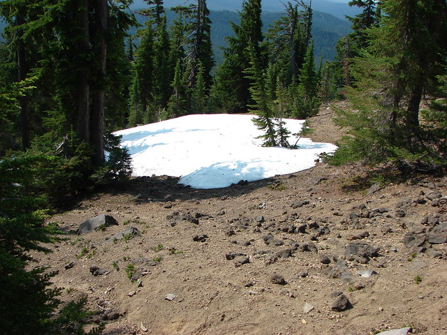 Snow along the Mt. Bailey Trail