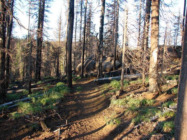 Patjens Lake Trail