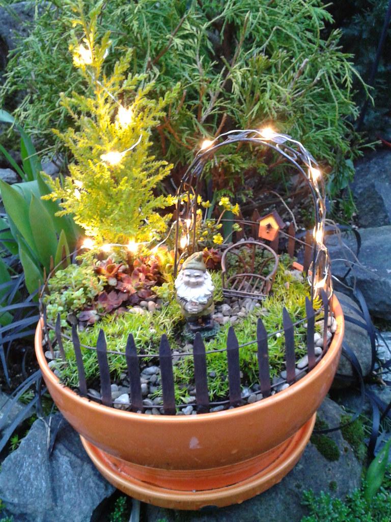 Attrayant ... Mini Gnome Garden | By ...