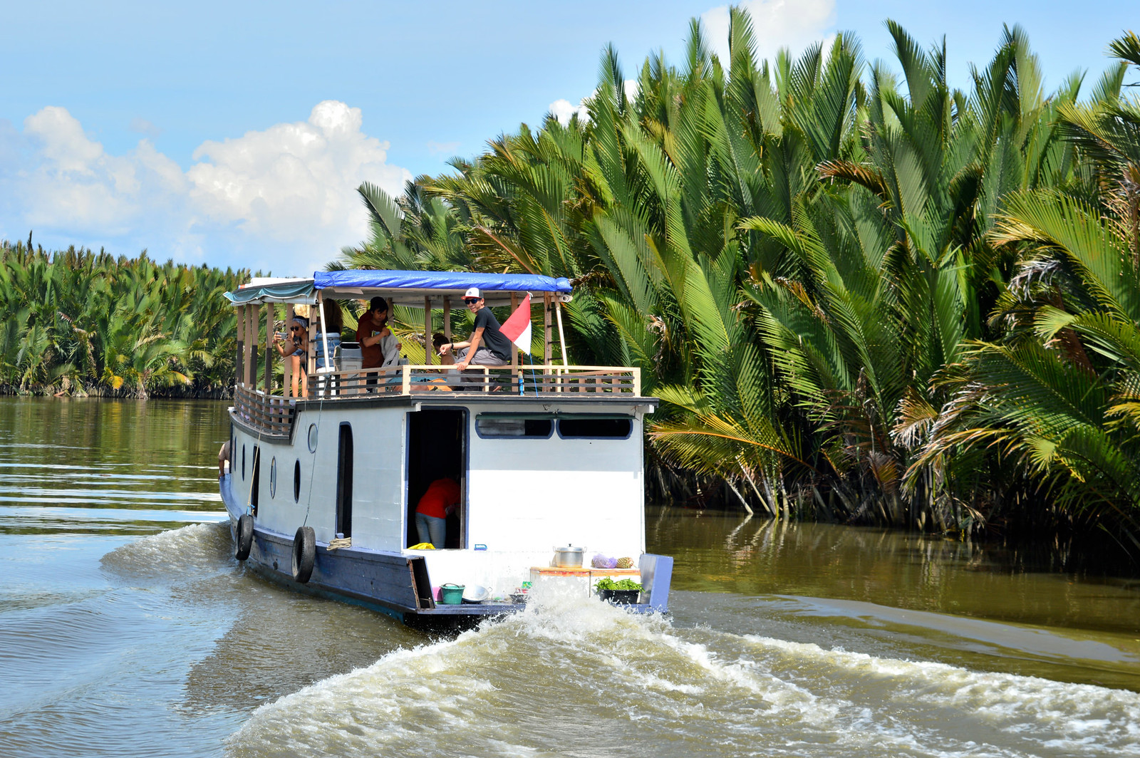 Traditional Klotok boat cruising the Sekonyer River in Borneo.
