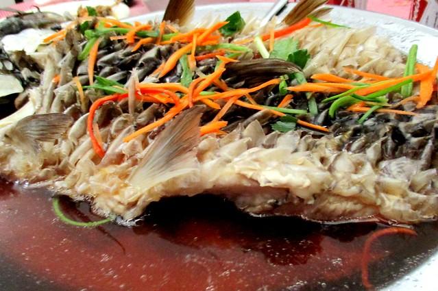 Ikan semah 2