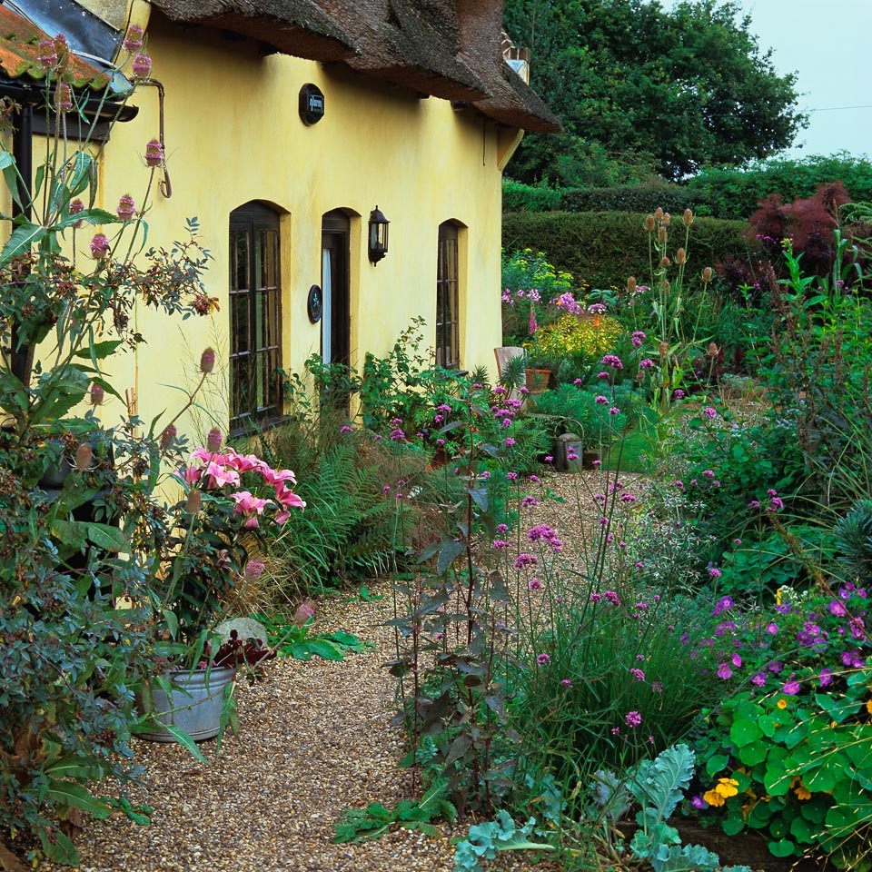 English cottage garden this thatched cottage has front House and garden online