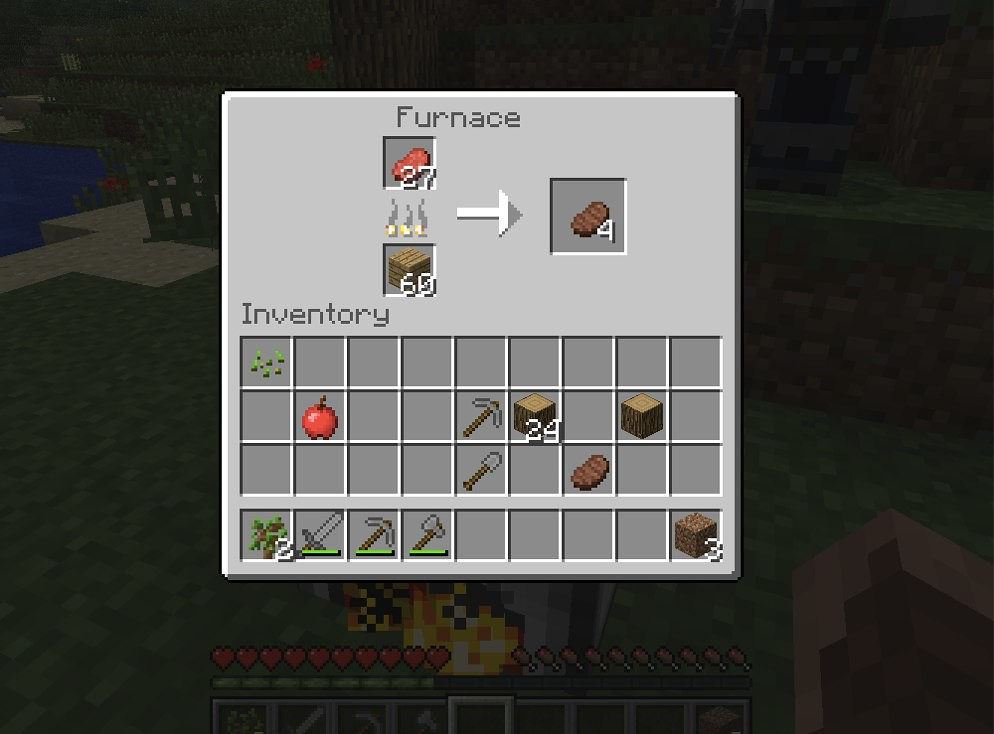 Minecraft - Cooking so...