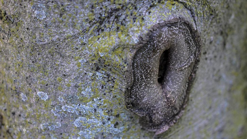 Close up figa cazzo porno