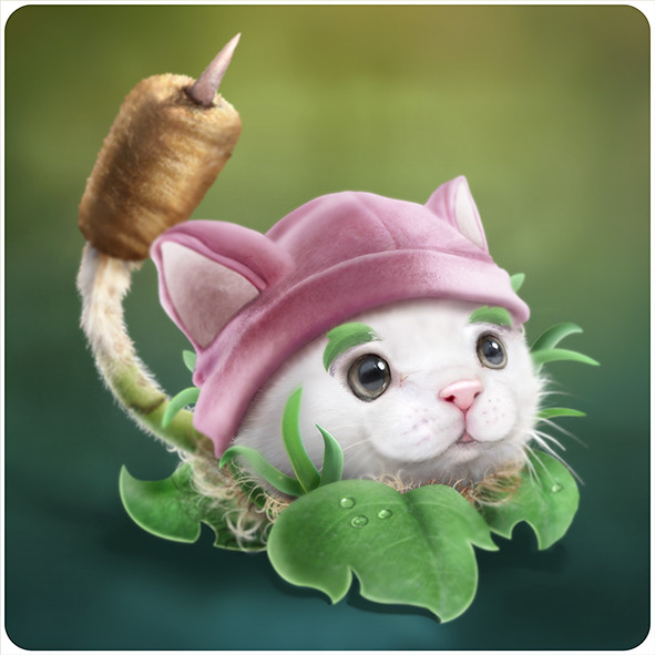 Cat tail plant