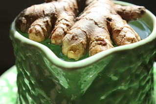green fingers growing organic ginger and turmeric in a co flickr. Black Bedroom Furniture Sets. Home Design Ideas