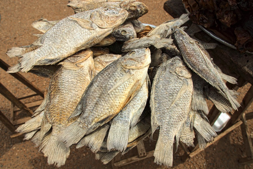 Dried and salted tilapia on sale at kpong fish market for Dried salted fish