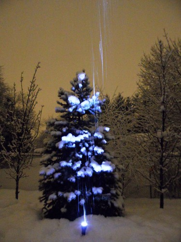 Feb. 27-snowfall in the night-5 | by yarnloopie