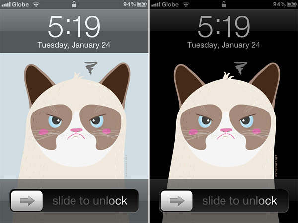 Tard The Grumpy Cat Free IPhone Wallpaper