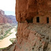 Grand Canyon National Park: Colorado River Nankoweap Granaries 3516