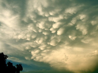 Mammatus clouds after Friday's afternoon deluge. | by Finepixtrix