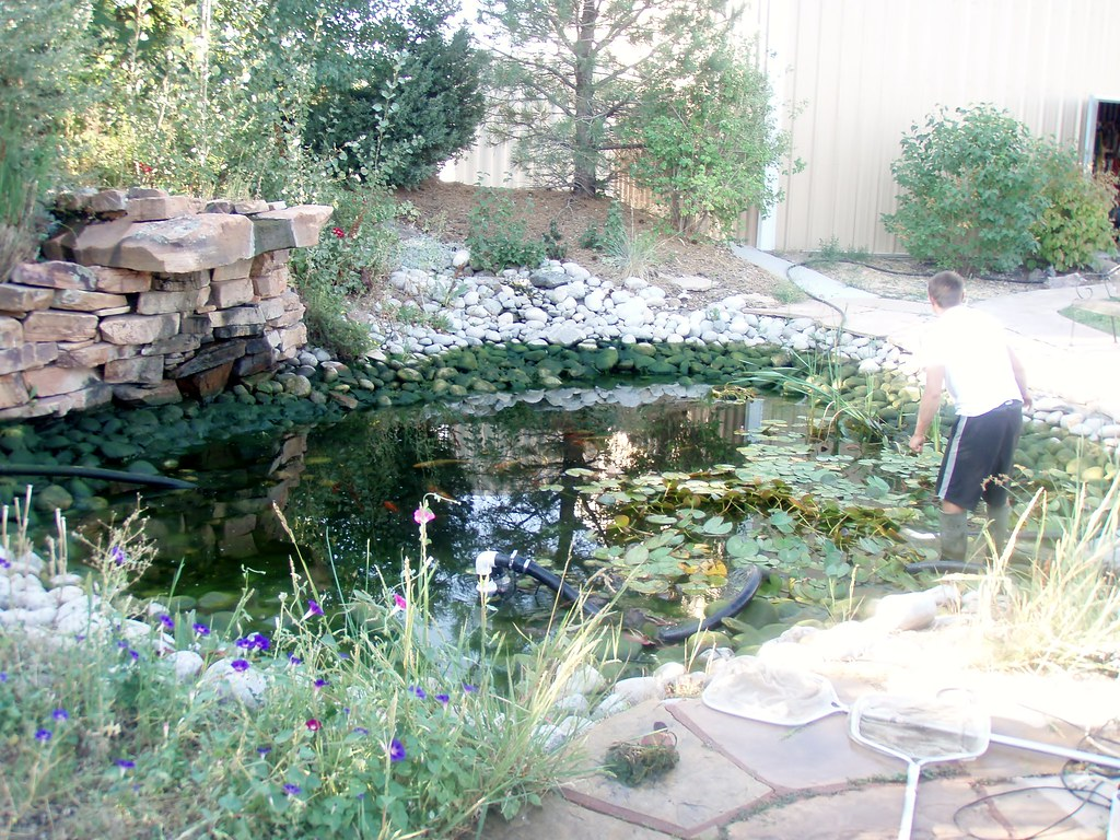 Pond cleaning parker co waters edge pond service for Pond maintenance companies
