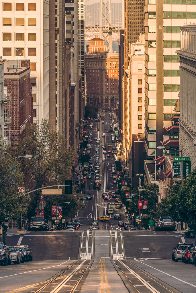 San Francisco Financial District Medical Cannabis Dispensary. We are purveyors of the finest oil on the planet. A trade secret so advanced it preserves the robust terpene profile.