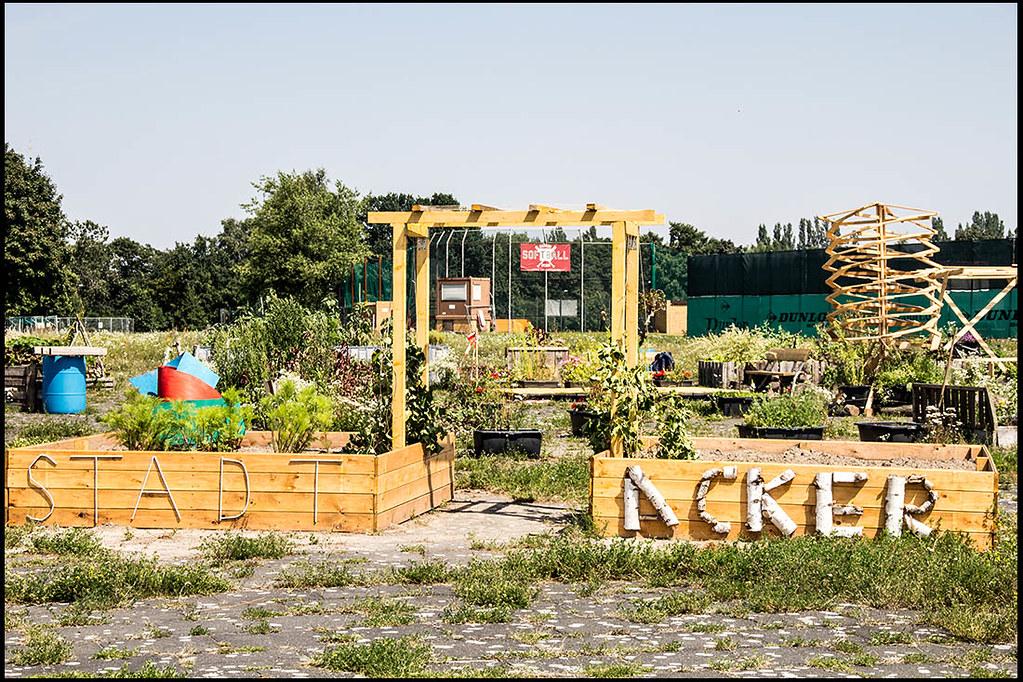 stadtacker urban gardening berlin tempelhof juli 2012 flickr. Black Bedroom Furniture Sets. Home Design Ideas