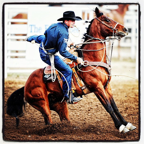 Rodeo cowboy photography my rodeo photography by